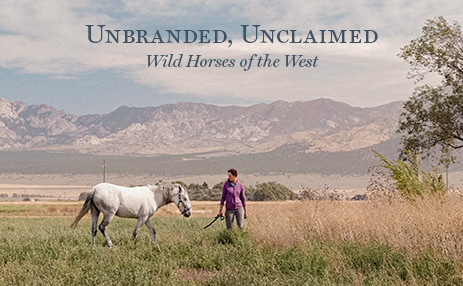 Unbranded, Unclaimed // Short FIlm